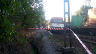 Espainiar Kongresuan landuko dute gaur Urduña eta Bilbo arteko tren zerbitzuaren egoera