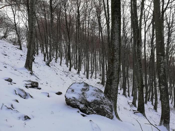 [KRONIKA] Iturrigorri: oinatz zuriek koloreztatutako paisaia - 10