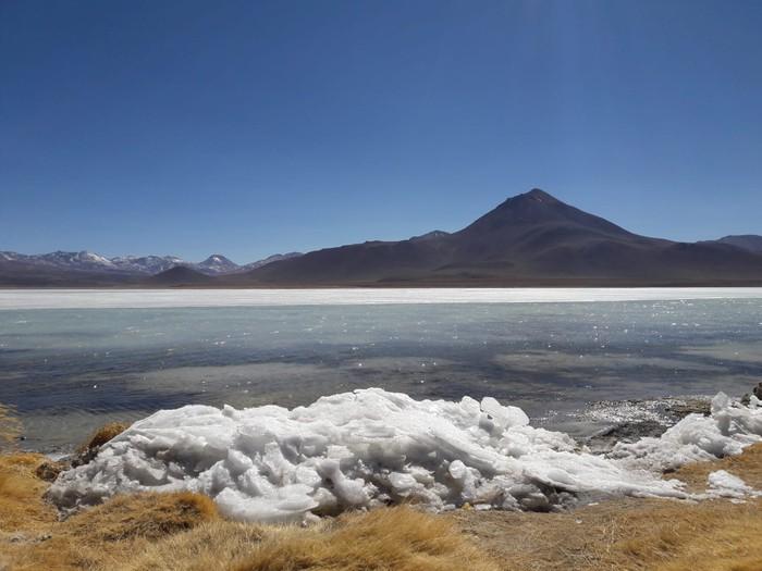 [UDARIKLIK] Haizea Otaola, Argentinako hegaztiak ikertzeko bidaiari - 2