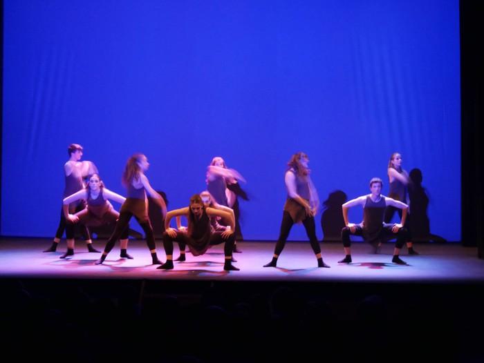Ballet gala, San Fillippo sindromearen alde - 66
