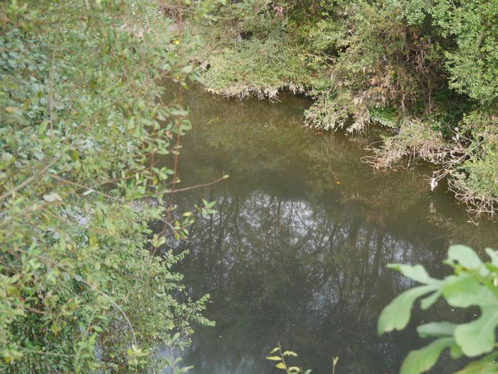 Isurketa berria gertatu da Nerbioi ibaian - 7