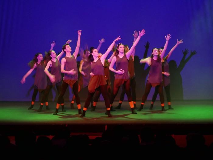 Ballet gala, San Fillippo sindromearen alde - 55