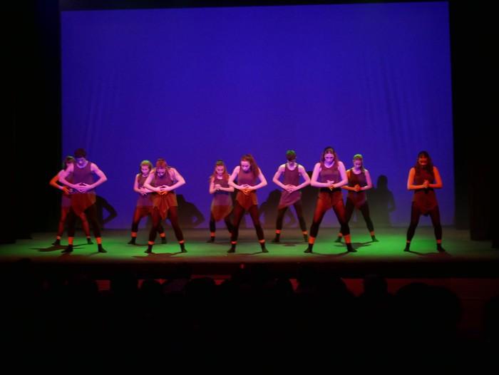Ballet gala, San Fillippo sindromearen alde - 53
