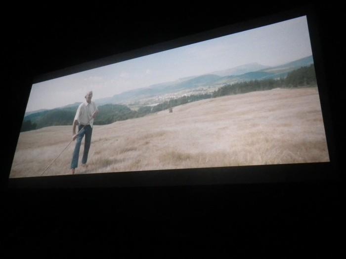 "Amurrio Antzokia txiki geratu da ""Los últimos pastores de la Sierra Sálvada"" dokumentalaren estreinaldian - 4"