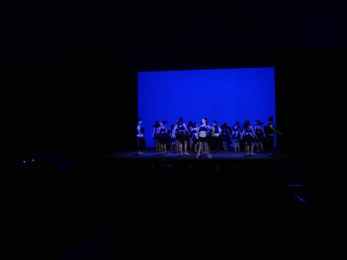 Ballet gala, San Fillippo sindromearen alde - 15