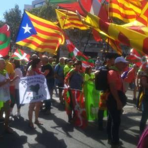 Eskualdeko zenbait herritar egon ziren atzo Diadan Independentistak sarearen ordezkaritzan