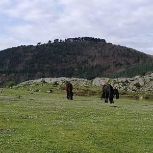 Sasiburu bisitatu dute asteburuan Ganzorrotz Mendi Kirol Elkarteko kideek