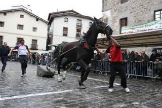 Astelehena bitarte Euskadiko Zaldi proba txapelketa egongo da Laudion