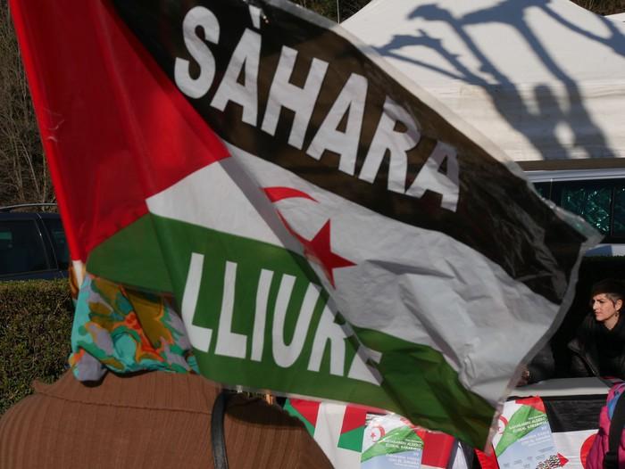 Sahararen aldeko janari karabana argazkitan - 15