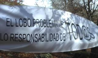 San Isidro egunean azokarik ez Arespalditzan