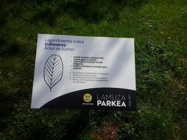 Lamuza Parkean 2. auzolana - 3