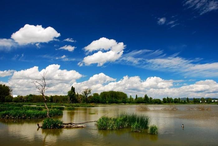 Natura turismoari buruzko jardunaldiak izango dira datorren astean - 2