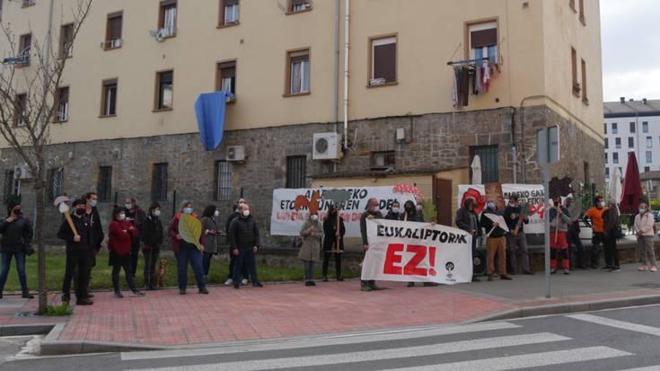 Euskadiko Basogintza Elkarteen Konfederakundearen aurrean mobilizatu dira eukaliptuaren aurka