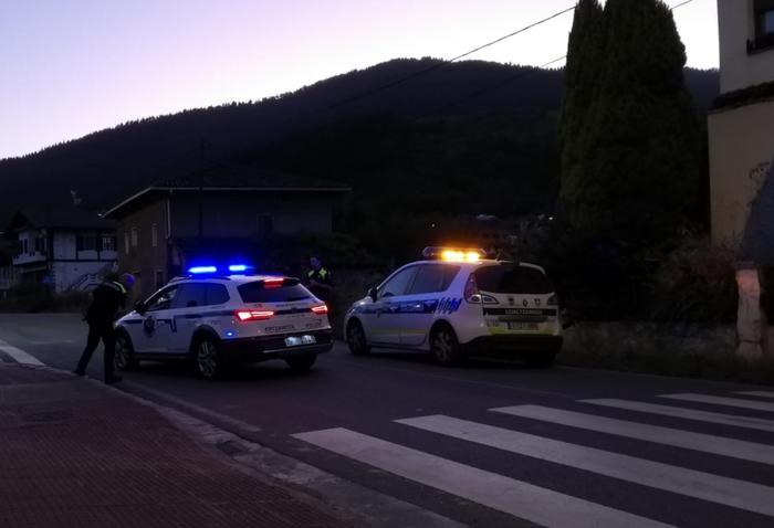 Auto batek bi ardi harrapatu eta hil zituen atzo Gardean