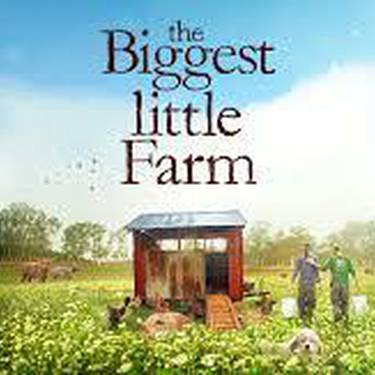Mi pequeña gran granja
