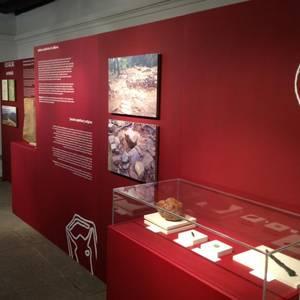 Elexazarreko aztarnategian aurkitutako tresnen erakusketa