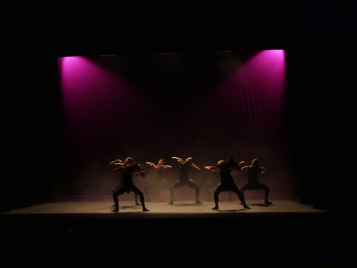 Ballet gala, San Fillippo sindromearen alde - 63