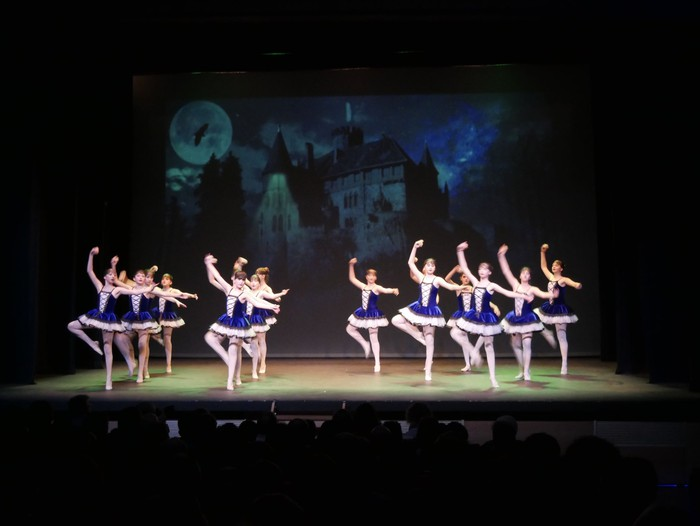 Ballet gala, San Fillippo sindromearen alde - 4