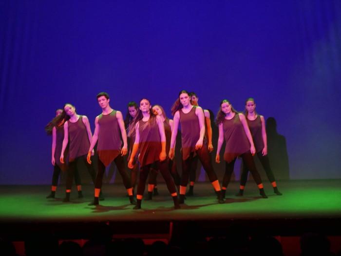 Ballet gala, San Fillippo sindromearen alde - 54
