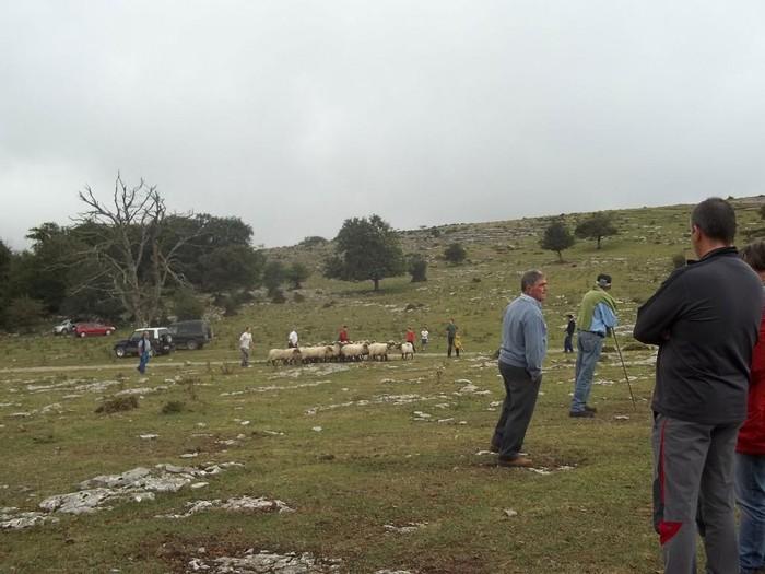 San Vitores Jaia 2011 (Aiara) Irailak 3 - 7