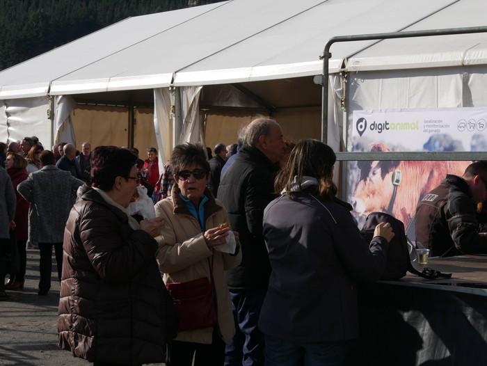 Terreña arraza eta idiskoak nagusi, Orozkoko Santa Luzia azokan - 43