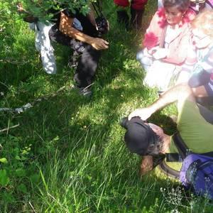 Orkideak ezagutzeko irteera Etxaurren inguruetan