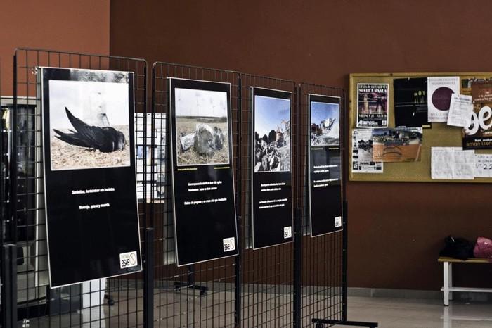 Industria eolikoen gaineko erakusketa Bañueta kiroldegian