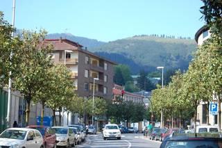 Aiara eta Gasteiz lotzen dituen autobusen prezioa %50 igo dela salatu du ezker abertzaleak Biltzar Nagusietan