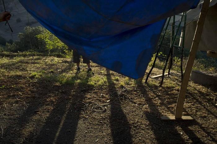 Soxon jaiak ospatu dituzte asteburuan - 29