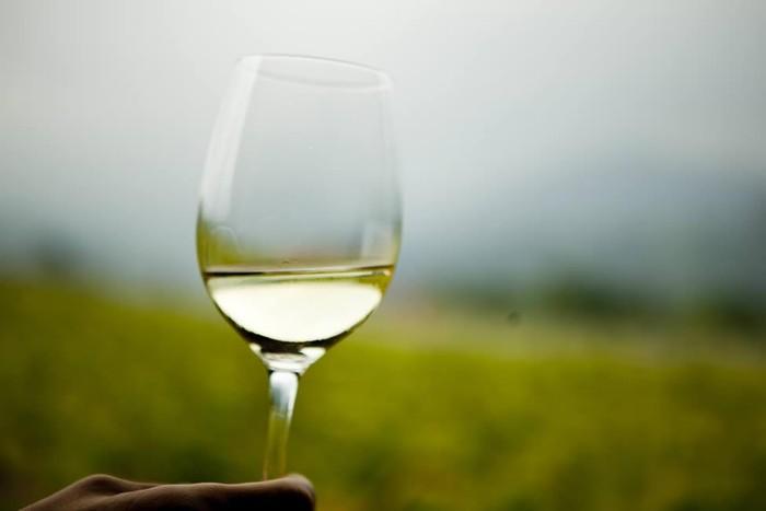 Aiarako Txakolinak International Wine Guide 2012 sariak jaso ditu