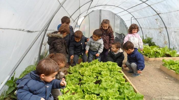 Eskola Agenda 21 programa garatzeko diru-laguntza jaso du Urduñako Herri Ikastetxeak