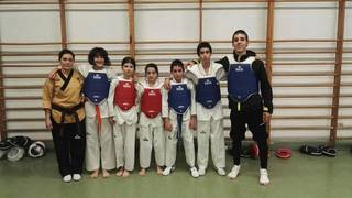 TKD Laudioko zazpi kirolarik parte hartuko dute Espainiako Taekwondoko Open Nazionalean
