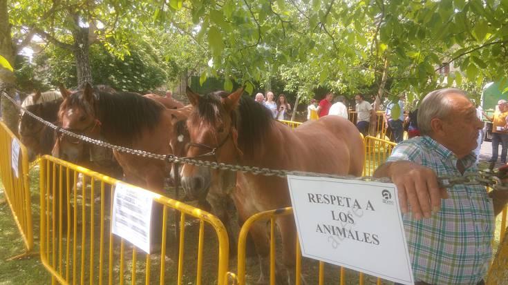 San Isidro Azokak jende ugari erakarri du Arespalditzara